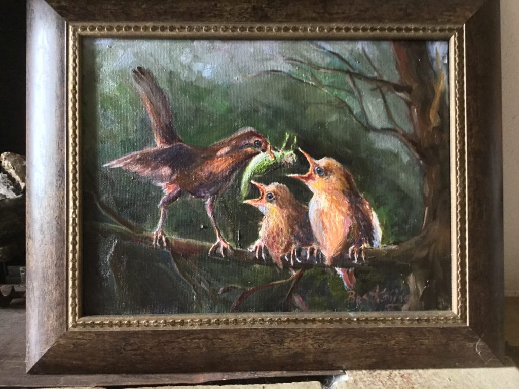 160620_Bas Konings-Moeder vogel voert jongen