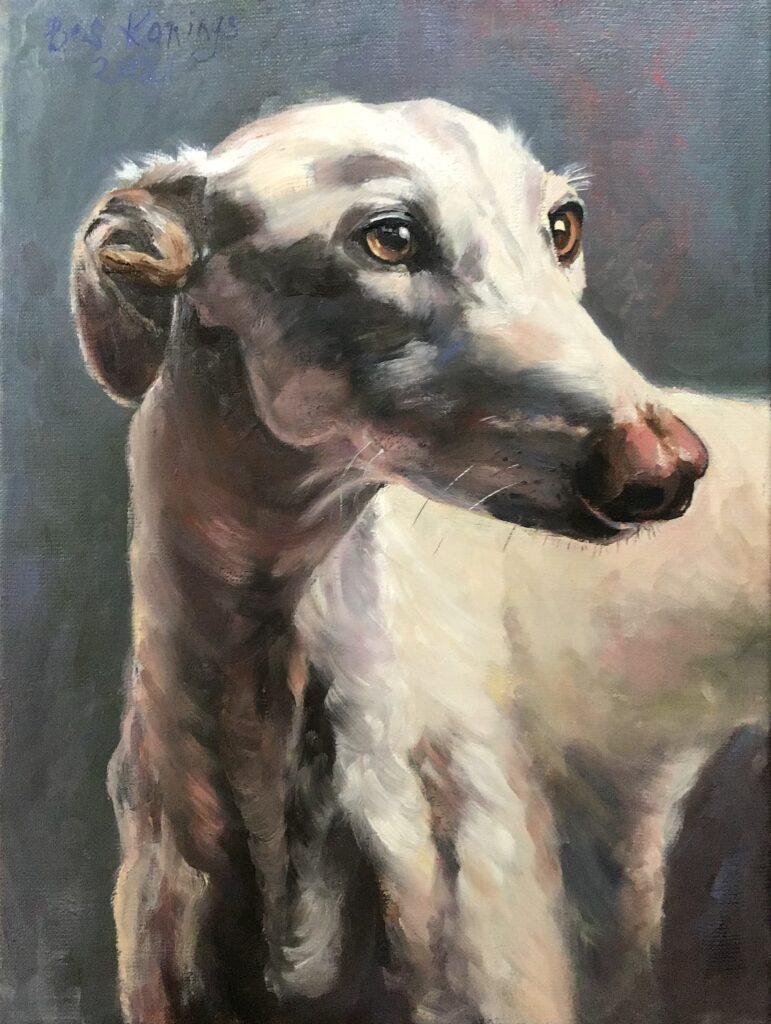 180621_Bas Konings-Witte hond 30x40